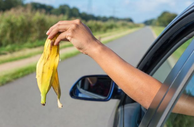 Photo of a hand dropping a banana skin out of a car window