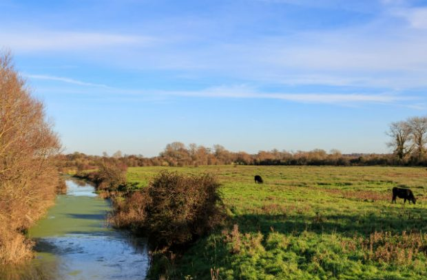 farm with river on left hand side