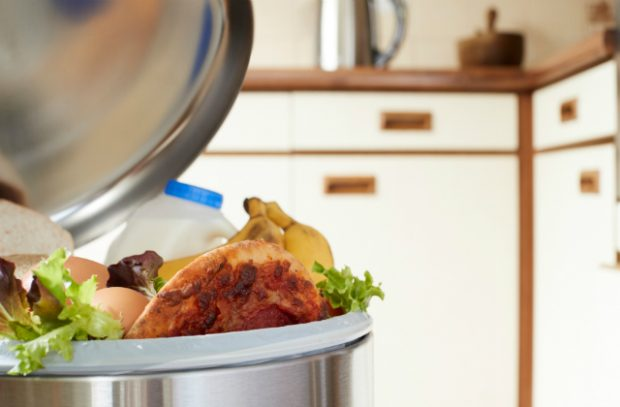 Kitchen bin with a milk bottle, eggs, salad, fruit and pizza emerging from it.