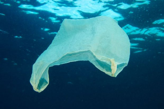 An image of a white plastic bag floating in the ocean.