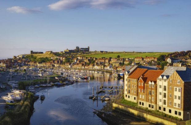 Whitby town and River Esk (Credit: Khrizmo/ iStock)