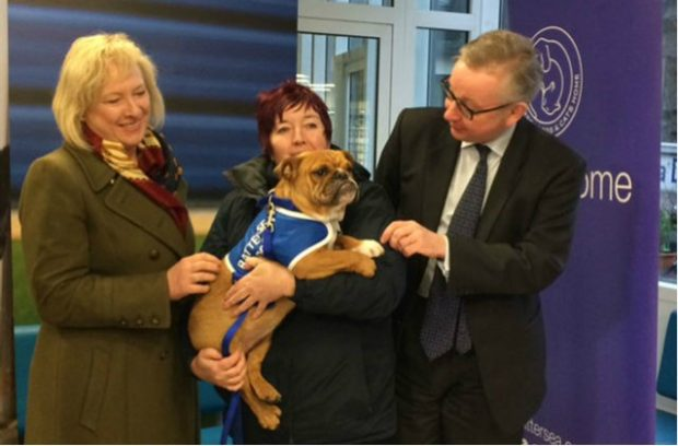 An image of Environment Secretary, Michael Gove, at Battersea Dog and Cat home