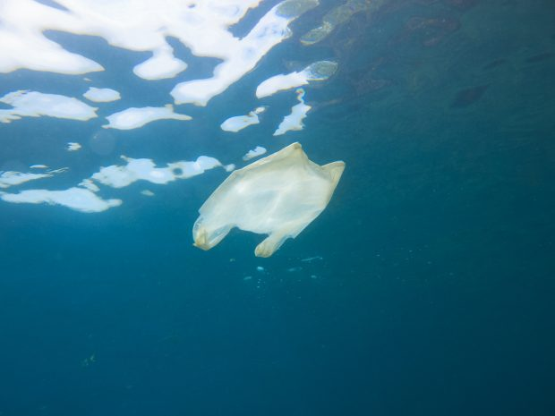 A plastic bag floating in the ocean