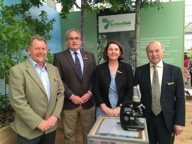 A picture of Tony Kirkham [of Royal Botanic Gardens, Kew], Geraint Richards [of Woodland Heritage], Nicola Spence and Lord Gardiner