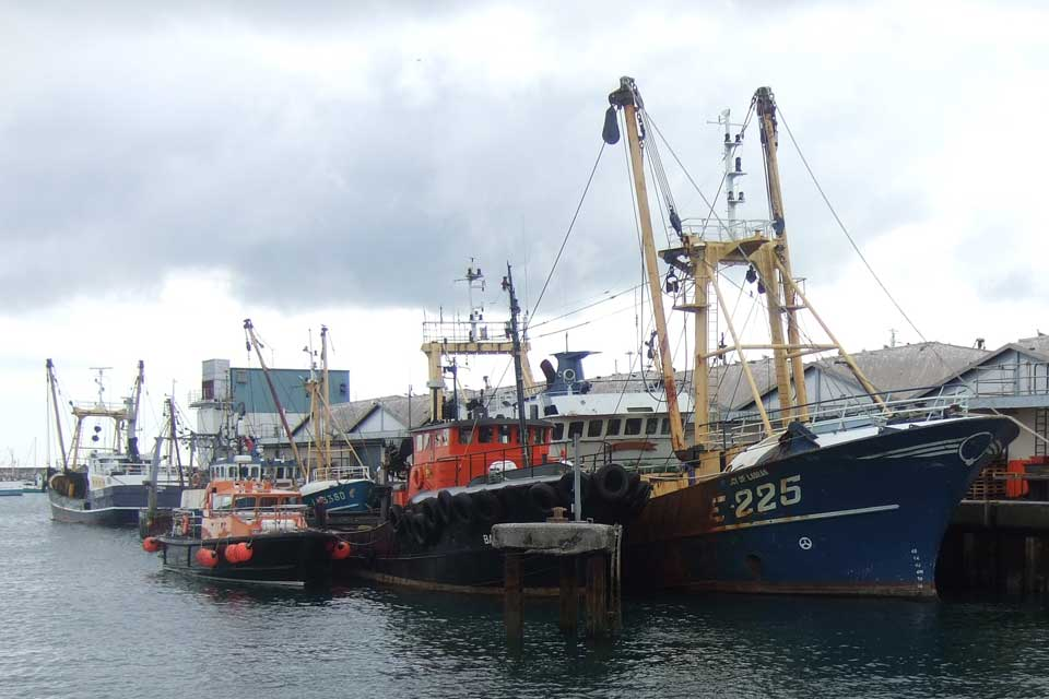 An image of fishing boats at the dock.