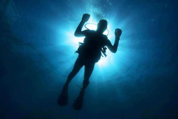 A person in scuba gear in the ocean.