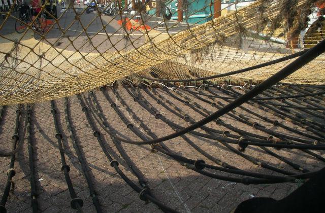An image of an electric fishing net.