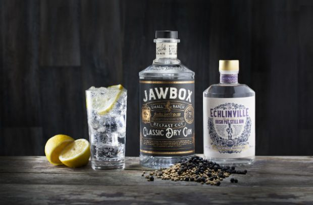 A glass of gin and tonic on a table next to two bottles of Gin labelled Jawbox and Echlinville.