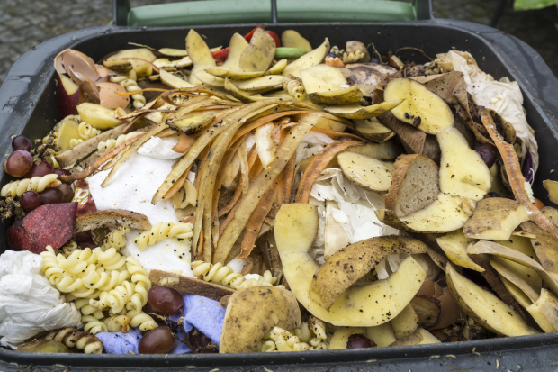 Image of food waste in a bin
