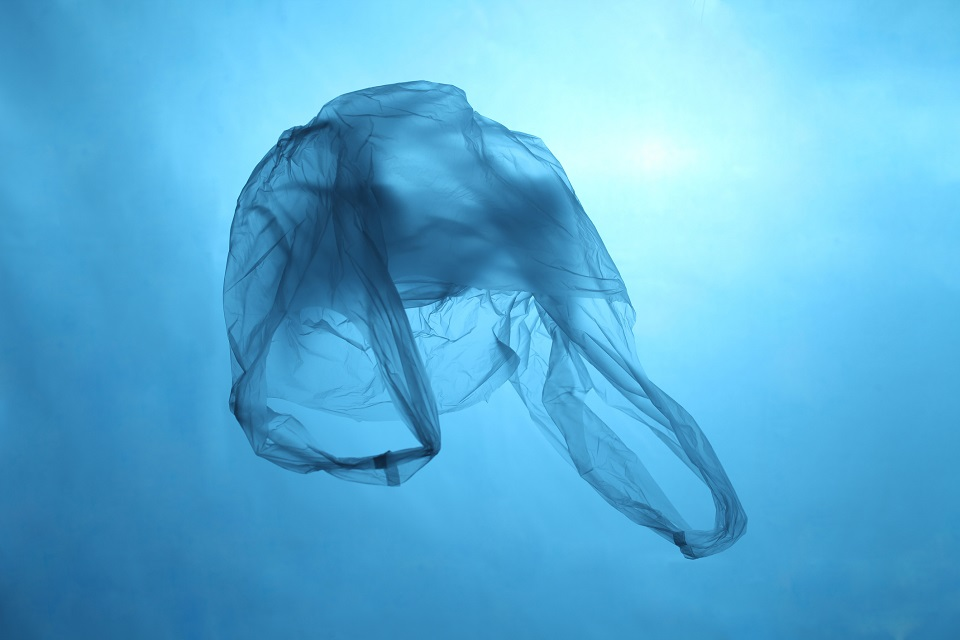 Plastic bag floating in water