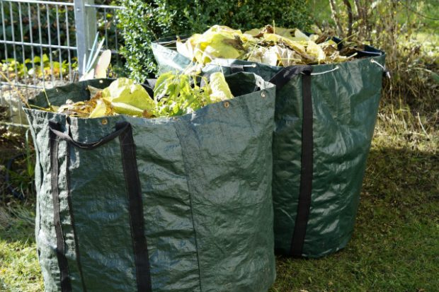 Two bags of leaves, grass and garden waste on a lawn.