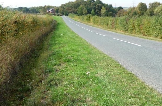 Wide grass verge on a road in Yorkshire (credit Christine Johnstone)