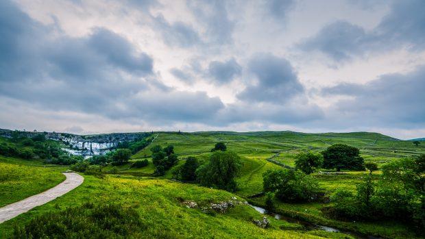 Green and verdant landscape