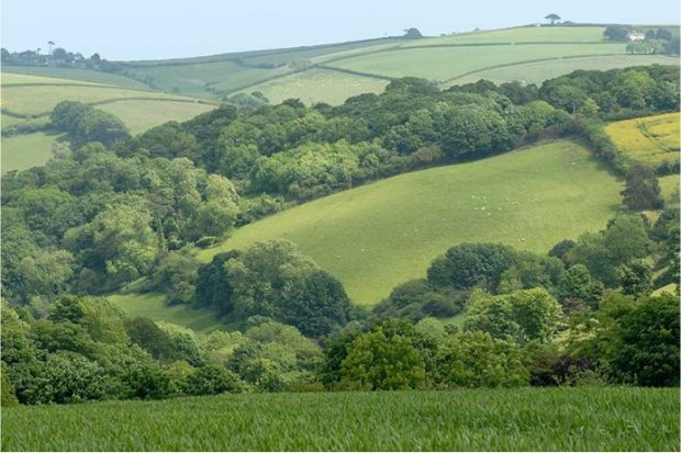 Rolling hills separated by woodland in English countryside