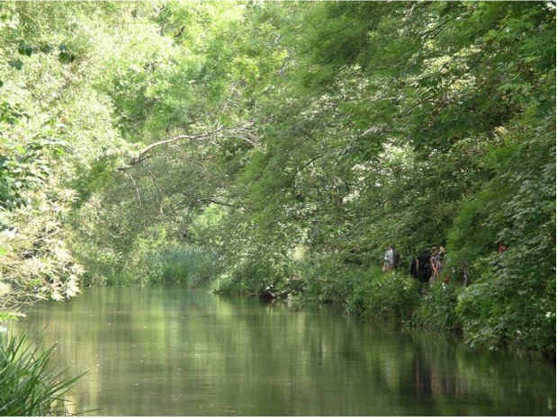 The River Itchen flows through a green environment.