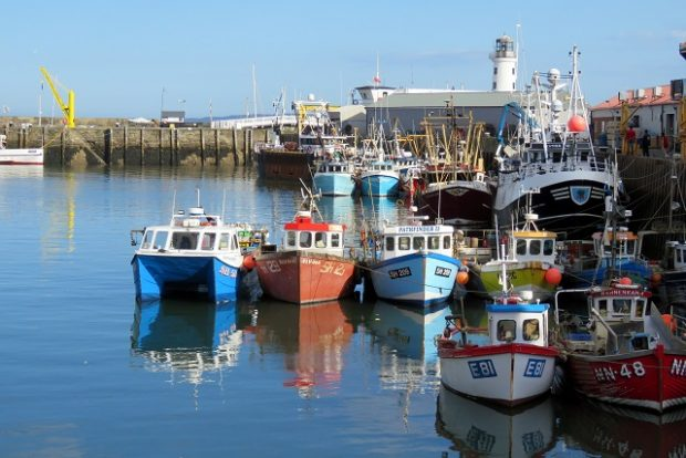 An image of fishing trawlers in Scarborough Harbour.