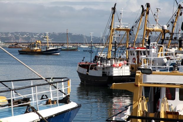 An image of fishing trawlers stationed in a harbour in Brixham.