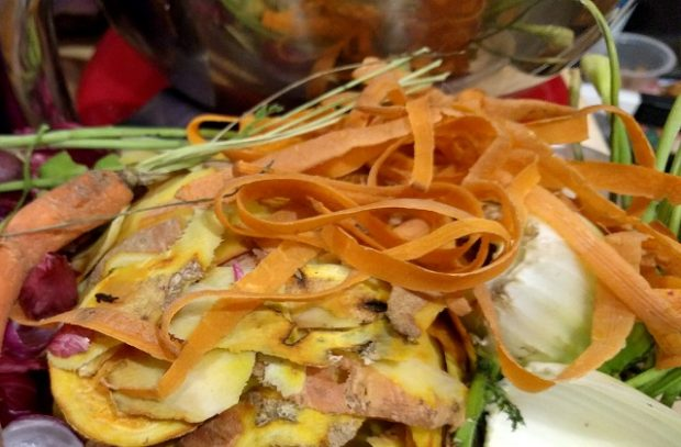 Scraps of food waste including various fruit and vegetable peelings