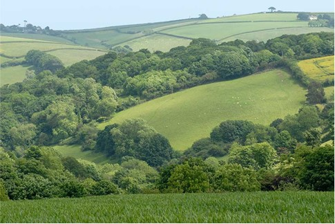 Rolling hills with woodland and hedges separating various fields