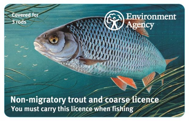 An image of one of the new fishing licences which features a drawing of a Wensum River roach.
