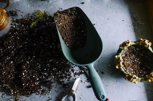 A gardening trowel and scissors on a surface with some soil in the trowel and on the surface. There is a small plant pot to the right of the trowel