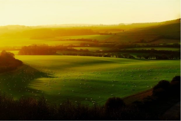 An image of countryside with rolling green hills at sunset.