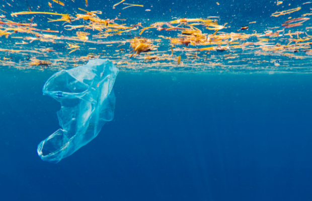 An image of a plastic carrier bag floating in the ocean.