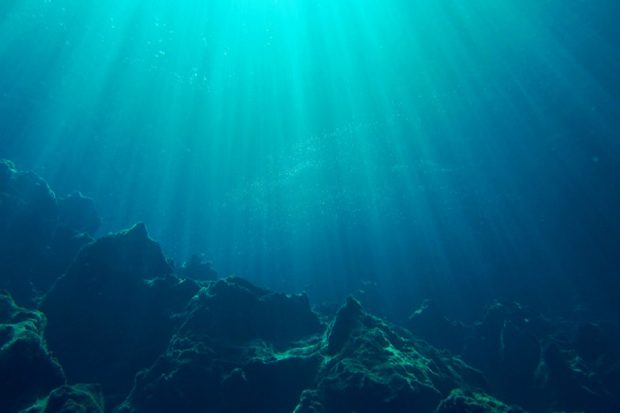 An underwater shot of a seabed