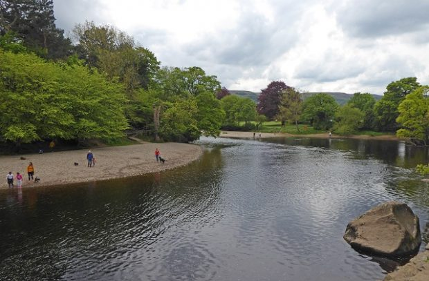 Picture of the River Wharfe with people paddling in the water and walking dogs along the side