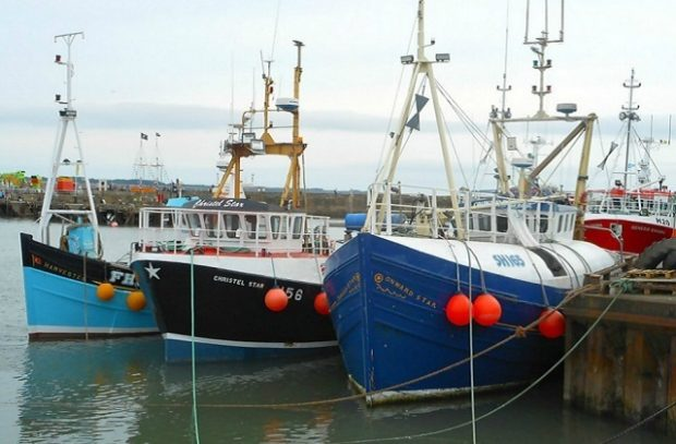 Three fishing vessels moored in a port