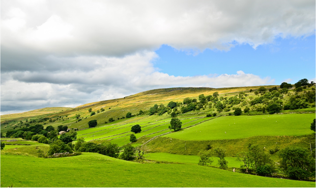 An image of rolling green hills