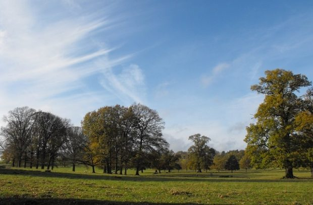 Image of Fawsley Park, Northamptonshire