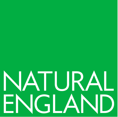 Green Natural England logo