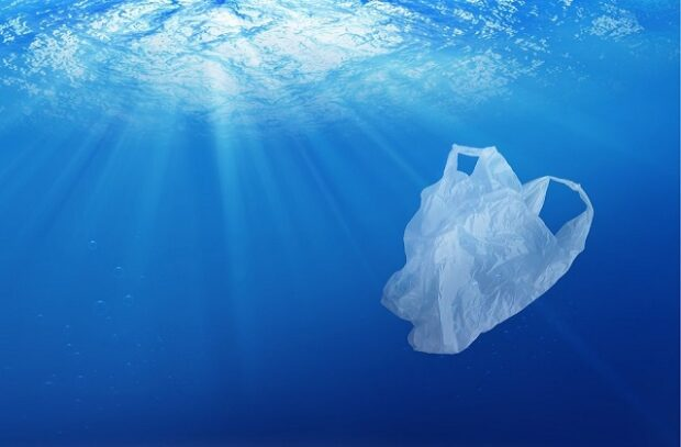 A plastic bag floating in water