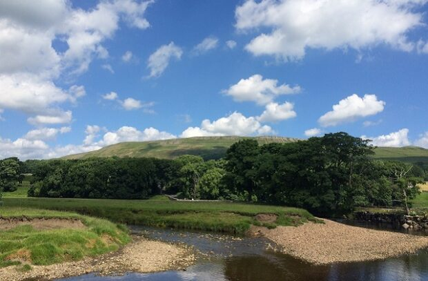 Image of a river with trees and blue sky behind.