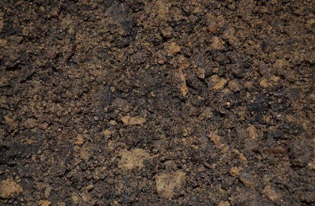 Soil-620x407.jpg